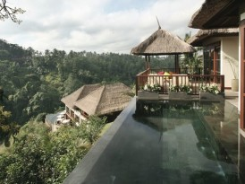 Virtual Vacation to Bali's Ubud Hanging Gardens