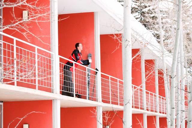 winter guest on balcony